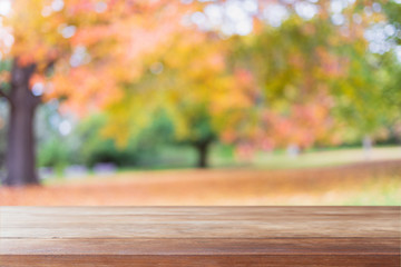 Empty wood table top and blurred autumn tree and red leaf background - can used for display or montage your products.