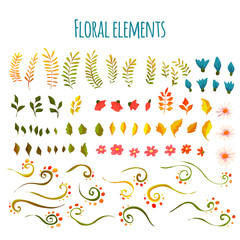Vector floral element. Flowers and grass. Hand drawn. Illustration
