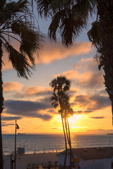 Beautiful Manhattan beach with palms at sunset in California, Los Angeles, USA.