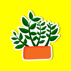 plant of simple color illustrations