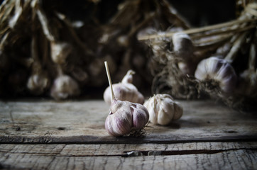 garlic and cove on wood background still life
