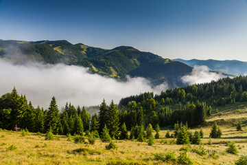Misty dawn in the mountains in summer.