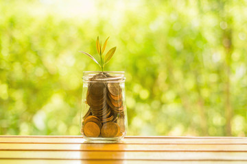 Coins in glass jar for money saving financial concept.