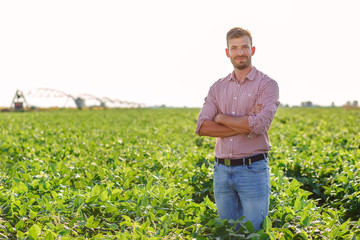 Portrait of young farmer standing in soybean field.