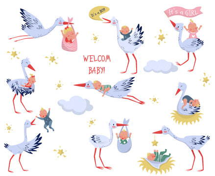 Flat vector set of white storks with babies. Lovely birds and newborn kids. Elements for children book or greeting card