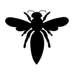 isolated, insect, bee silhouette