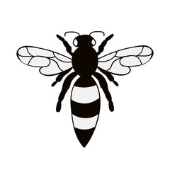 insect, bee silhouette