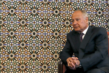 Arab League Secretary-General Ahmed Aboul Gheit looks on during his meeting with Yemeni President Abd-Rabbu Mansour in Cairo