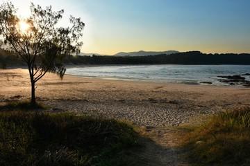 Wall Mural - Australian Coastline Diggers Beach