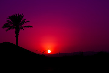 Pink Andalusian sunset