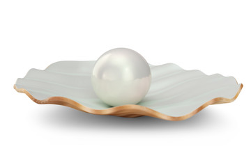 Shell with pearl inside. Natural open pearl shell. 3D illustration