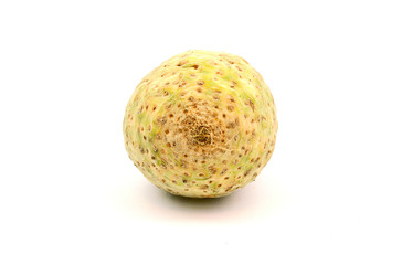 fresh celery root or Celeriac (Apium graveolens var. rapaceum) on white background.
