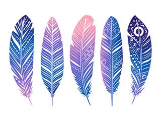 Color feathers vector set. Hand sketched tribal feathers isolated on white