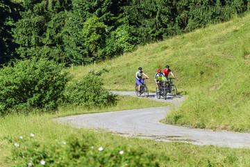 drei Radler mit E-Bikes erklimmen stressfrei eine Steigung