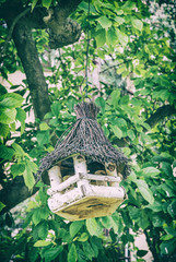 Wooden bird house hanging on green tree, analog filter