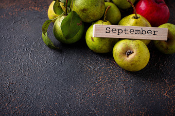 Autumn September background with pears