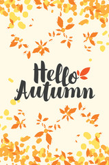 Vector illustration with calligraphic inscription Hello Autumn and colorful autumn leaves. Can be used for flyers, banners or posters