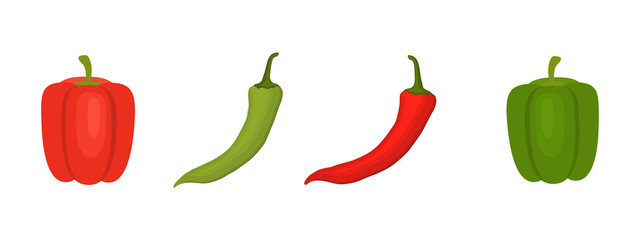 Red and green peppers isolated on a white background. Chilli peppers and sweet peppers. Vector illustration