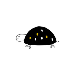 Vector hand drawn turtle. Ocean marine world.