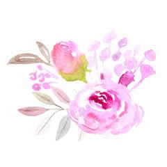 Watercolor rose flower sketch