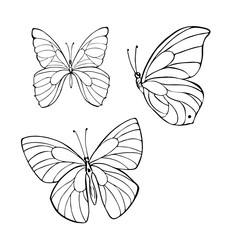 Set of silhouette butterflies isolated on white background. hand drawn vector illustration.