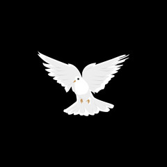 dove flying isolated icon