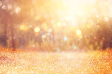 blurred abstract photo of light burst among trees and glitter golden bokeh lights.