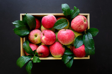 Fresh red apples in the wooden box on black background.  Top view.