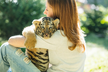 Little baby tiger cub with a woman who takes care of and hugs him in her arms