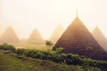 Wae Rebo Village in Flores Indonesia, the traditional Manggaraian ethnic village with cone-shaped traditional houses.