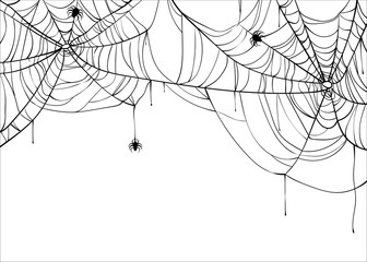 Halloween spiderweb vector background with spiders, copy space. Cobweb backdrop illustration isolated on white