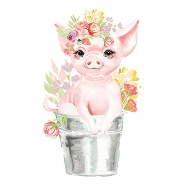 Cute watercolor pig, piggy, piglet with floral, flowers bouquet, wreath in a bucket