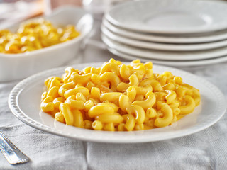 tasty mac and cheese on plate