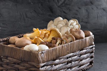 Wicker basket with forest rare delicious edible mushrooms on a dark textural background, flat lay.