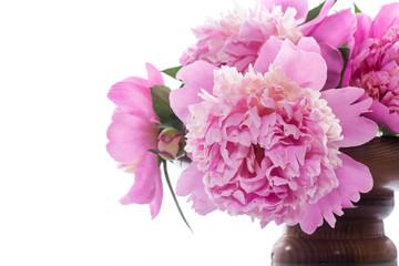 Foto op Plexiglas Azalea bouquet of blooming peonies on white background