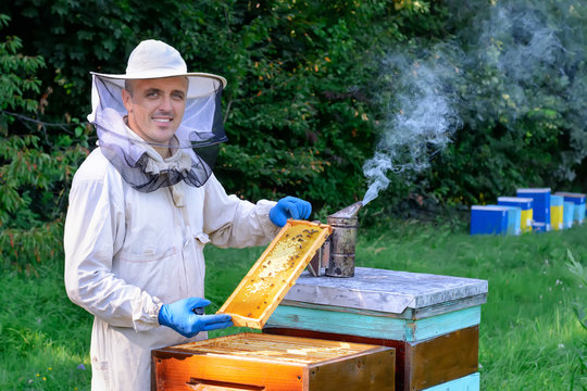 A young man beekeeper works on an apiary near bee hives. Natural honey directly from the hive. Cell with fresh honey. Top view.