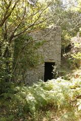 Cévennes - Ruine