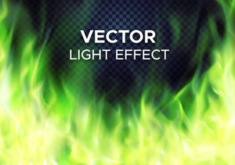 Burning green fire flames on transparent background. Vector special light effect