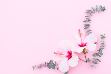 Wellness background with hibiscus flowers and eucaliptus twigs on pink background with copy space