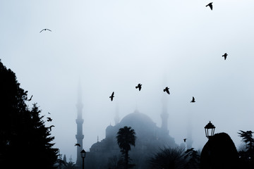 The Blue Mosque (Sultan Ahmet Camii), Istanbul, Turkey