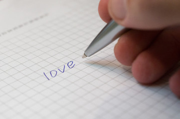 pen written word love on a piece of paper in a cage