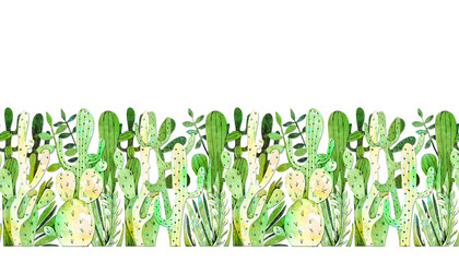 drawing watercolor cactus
