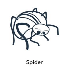 Spider icon vector isolated on white background, Spider sign , illustration with thin symbols or lined elements in outline style