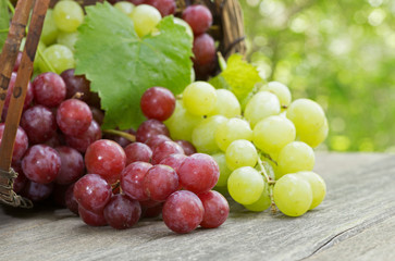 Fresh Red and Green Grapes on a Rustic Wooden Table Fototapete