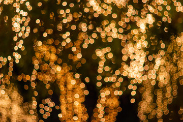 Blur - bokeh - Decorative outdoor string lights hanging on tree in the garden at night time - decorative christmas lights - happy new year