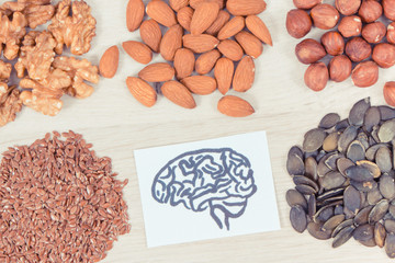 Drawing of brain and best nutritious food for health and good memory, healthy eating concept