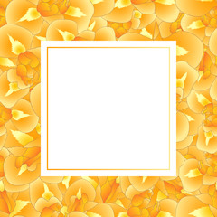 Orange Iris Flower Banner Card