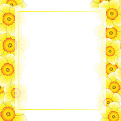 Yellow Daffodil - Narcissus Flower Banner Card Border