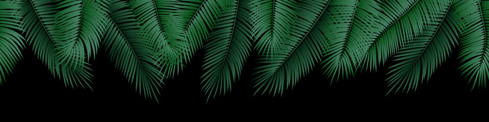 Wall Mural - Vector seamless summer palm leaves on black background.