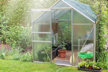 Little glasshouse in the garden